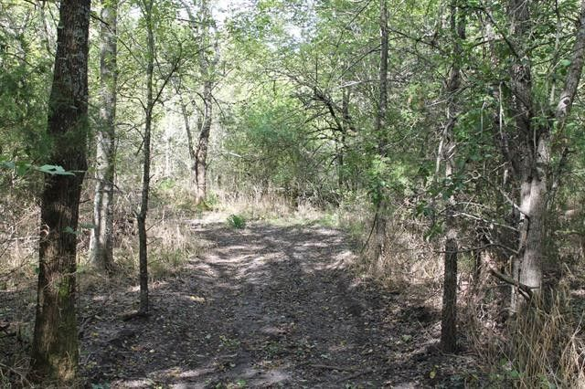 129 Ac County Road 1116 Greenville, TX 75401