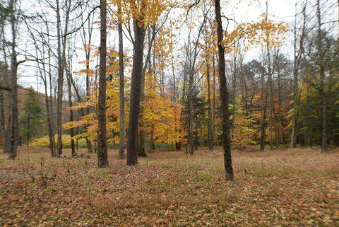Photo of 1173 Elk Grove Rd, Benton, PA 17814