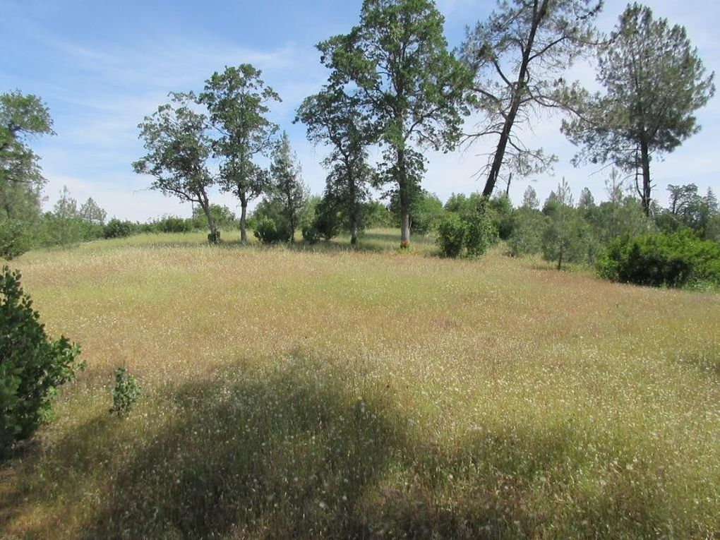 9 Acres Jones Valley Trl Redding, CA 96003