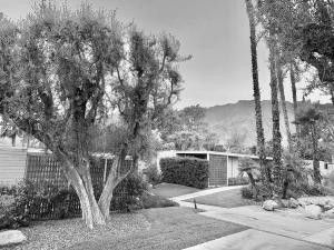 360 Cabrillo Rd Apt 201 Palm Springs, CA 92262