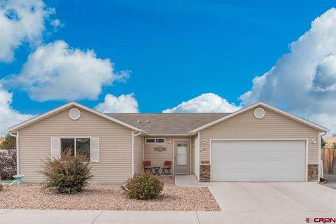 Homes For Sale Near Pomona Elementary School Montrose Co